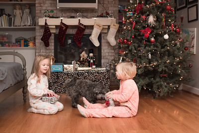 Leaving Auntie Lyuba's house was hard with everyone and all the excitement there, but there's nothing like Christmas morning at home and your kids waking up to presents under their own tree.