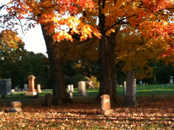 Fall at the Graveyard<br /> <br /> Photographer's Name: Marja Neylon<br /> Photographer's City and State: Geneva, IL