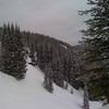 Vail, Colorado<br /> <br /> Photographer's Name: Tom Shaw<br /> Photographer's City and State: St. Charles, IL