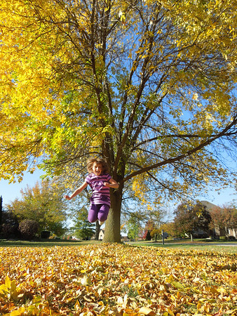 Jumping<br /> <br /> Photographer's Name: Anna La Fronza<br /> Photographer's City and State: Geneva, IL