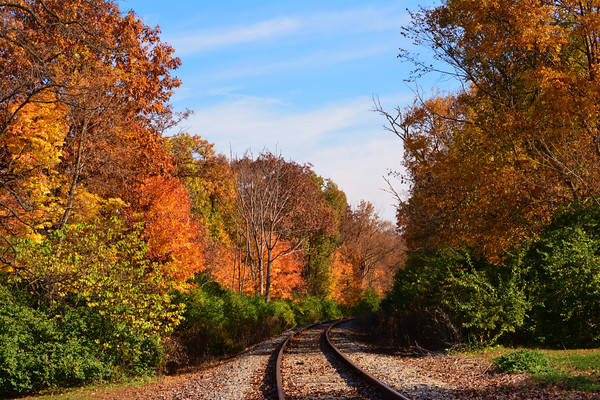 Fall Colors in the Tri-cities<br /> <br /> Photographer's Name: Dave Soderstrom<br /> Photographer's City and State: St Charles, IL