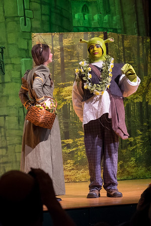 2015-03 Shrek Play 2525