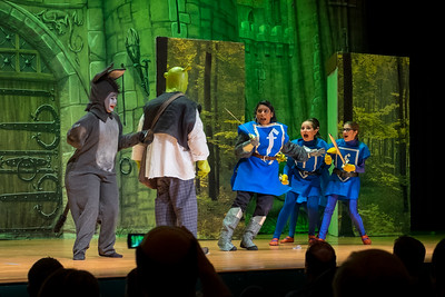 2015-03 Shrek Play 2287