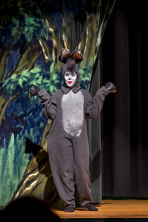 2015-03 Shrek Play 2401