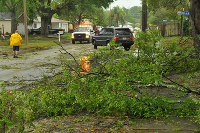 My front yard with all the tree branches.   City crew cleaning the street for traffic to get through.
