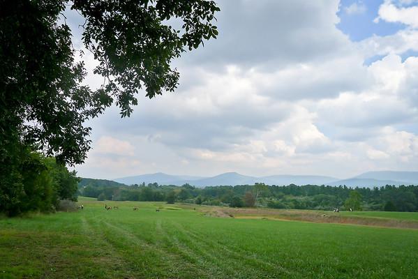 2011-09-10 P1000939