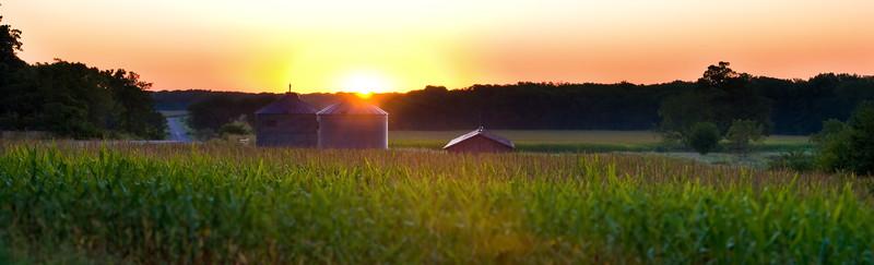 Sunrise over Corn