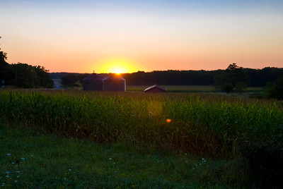 Sunrise over Corn
