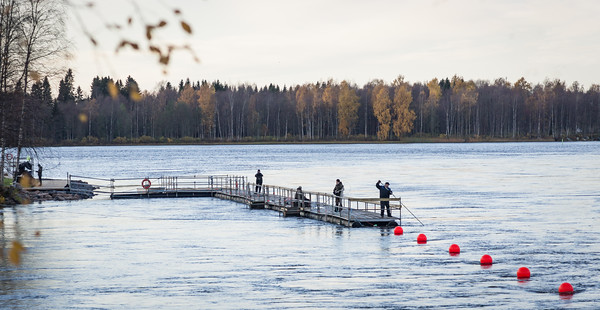 Fishing for Siika