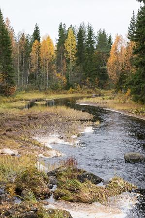 Small river near Loukkajärvi