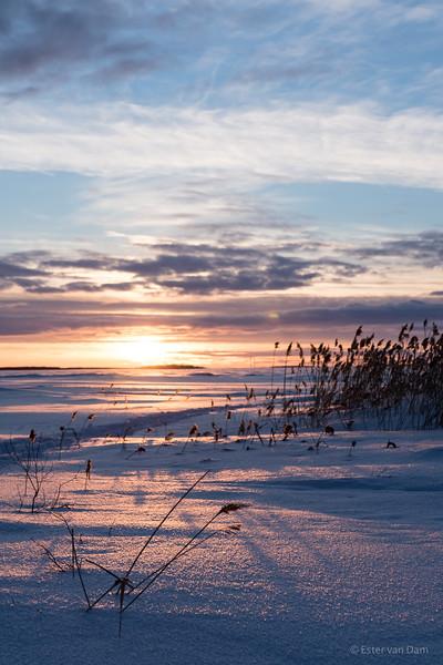 Sunset over the Bothnic Gulf from Hietasaari, Oulu