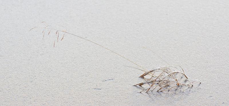 The Frozen Lake II