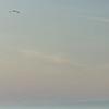 Gulf of Bothnia