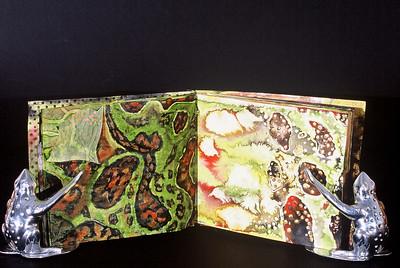 Frog Studies