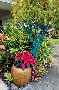 Kona Garden 2020