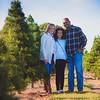 Xmas Tree Farm (7 of 31)
