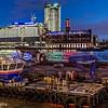 Gundog on the Thames.