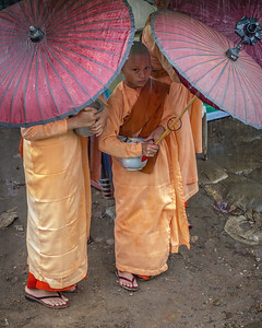 Novice Nuns in the Rain, Yangon, Myanmar