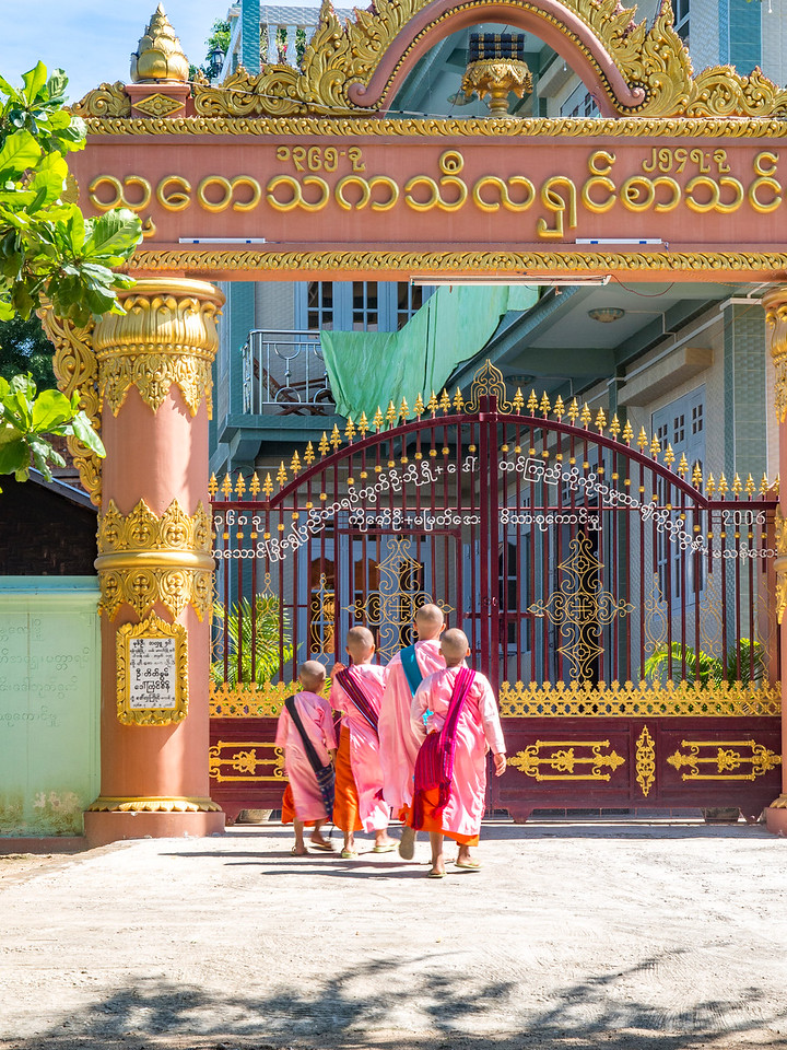 Young Buddhist nuns going to school