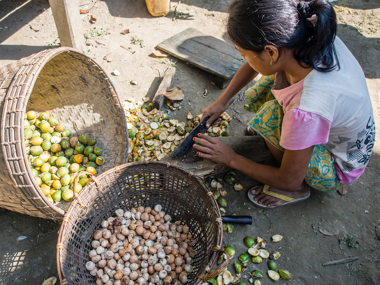 Woman chopping betel nuts open, Sitthaung village