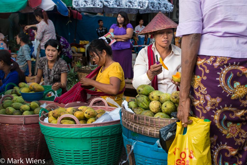 Mango testing in Myanmar