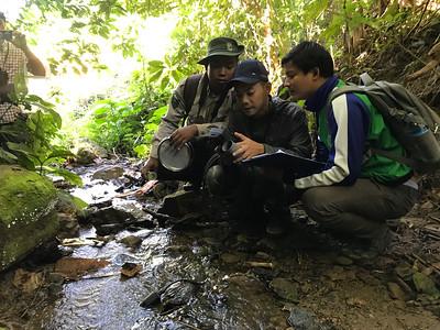 stream work