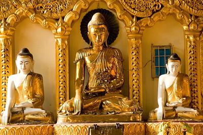 Golden Buddha-BUR_8392