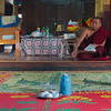 Cats are still welcome at the Nga Hpe Kyaung Monastery, they just don't jump anymore