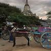 Horse-drawn carts waiting for tourists at Shwesandaw Pagoda at sunset, Bagan, Myanmar