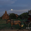 Moon rise at Shwesandaw Pagoda, just after sunset, Bagan, Myanmar