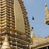 Golden pigeon roost, Shwezigon Pagoda, Nyaung Oo, Myanmar