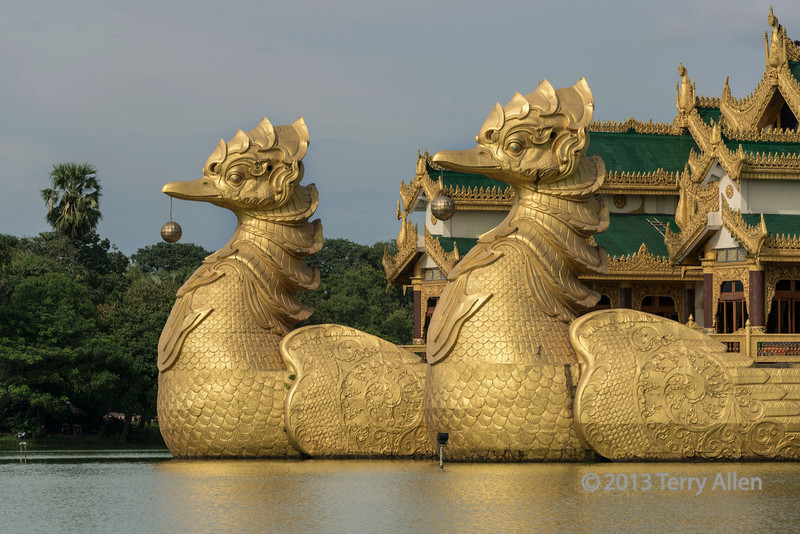 """Close-up-of-the-birds pulling the Royal Barge, Kandawgyi Park, Yangon, Burma<br /> <br /> I couldn't figure out why 'ducks' were pulling the barge, so I looked it up,   The birds are called Hamsh, traditionally geese or swans.  They are a symbol of """"purity, detachment, divine knowledge, cosmic breath (prana) and highest spiritual accomplishment"""". A high level of symbolism is attached to water birds as they can walk on the earth, fly in the sky, and swim in the water."""
