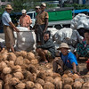 Workers-harvesting-coir-(coconut-fibre),-Irrawaddy-River-docks,-Yangon,-Burma
