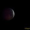 BloedMaan-RW190121_0025