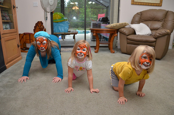 Tried my hand at face painting , for some reason all the grandkids wanted to be tigers??