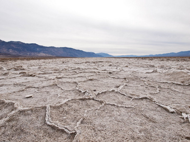 Looking south down the salt flat