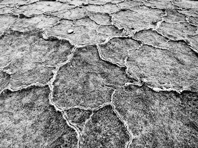 Dried salt
