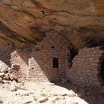 Arch Canyon Ruin