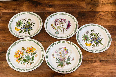 Portmeiron Botanic Garden Dinner Plates