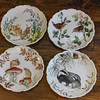 Royal Albert Plates