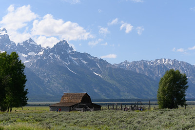Tetons & Yellowstone-264