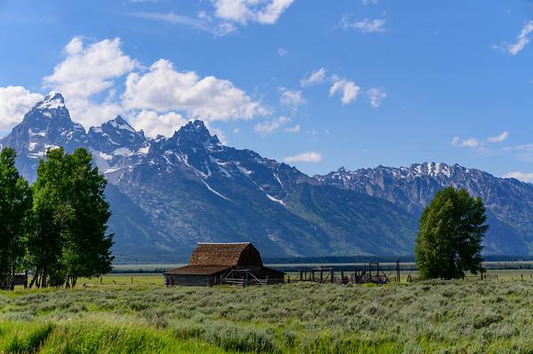 Tetons & Yellowstone-265