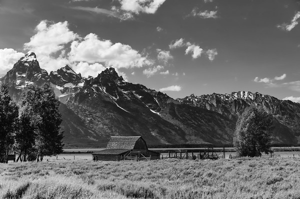 Tetons & Yellowstone-265-Edit