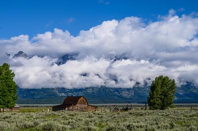 Tetons & Yellowstone-2