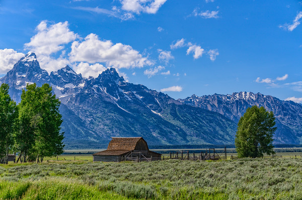 Tetons & Yellowstone-265-Edit-3