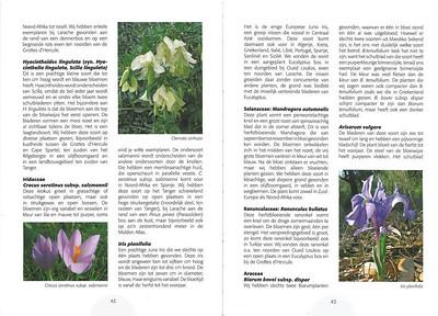 De herfstbloeiende flora van NW Marocco (NRV no 101 Februari 2011) p. 42-43