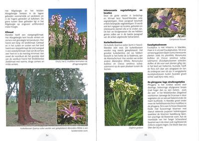 De herfstbloeiende flora van NW Marocco (NRV no 101 Februari 2011) p. 34-35
