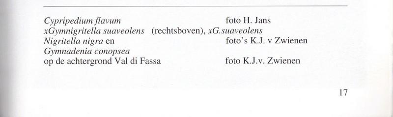 Captions, p17