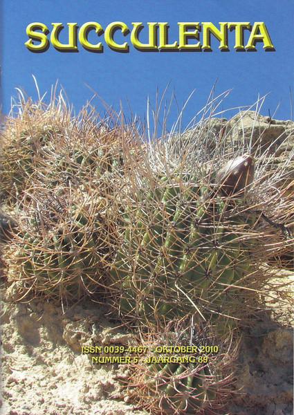 Succulenta, October 2010, Cactussen in Patagonië, Argentinië, Kees Jan van Zwienen