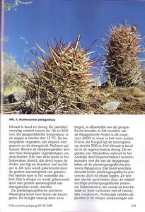 p231, Succulenta, oktober 2010